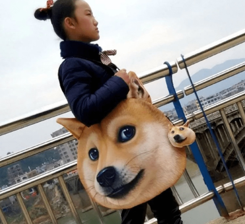Dog face bag from Taobao